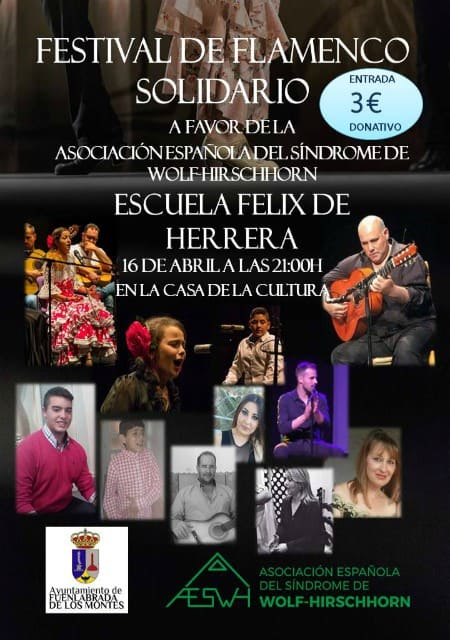 Festival de Flamenco Solidario - Abril 2019