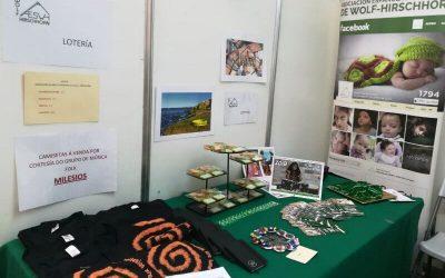 Diversiarte mercadillo solidario en Lugo