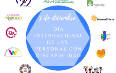 El SWH en el Día Internacional de las personas con discapacidad